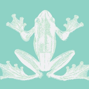 vintage frog illustration in calming green and creme