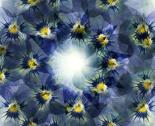 Kaleidoscope3_thumb