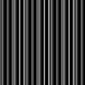 LIZARD GECKO BLACK stripes