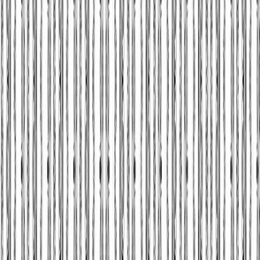 LIZARD GECKO WHITE Unusual Stripes