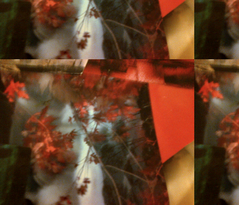 Falling Leaves fabric by denise_fulks on Spoonflower - custom fabric
