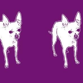 Punky Purple Pop Pascoe