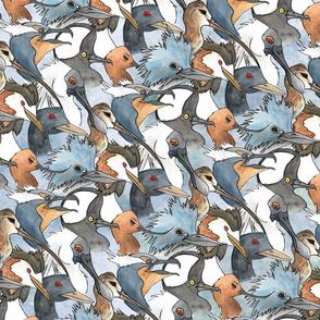 4bagsbird