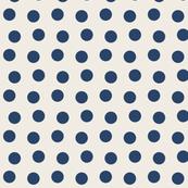 LSS basic blue dots