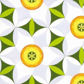 Geometric Narcissus