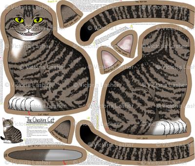 The Cheshire Cat kit