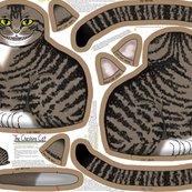 Rcheshire_cat_kit_150_shop_thumb