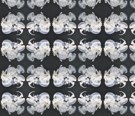 jellyfish cluster fabric by laigrai on Spoonflower - custom fabric