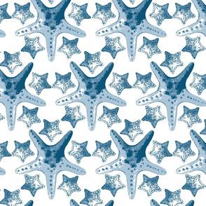 royaltystarfishpattern