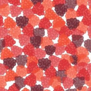 Raspberry Fiesta