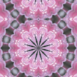 Kaleidescope 3413 k0005 reflect