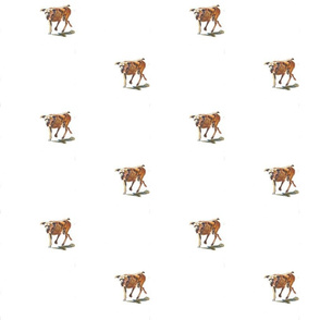 dog_gimp