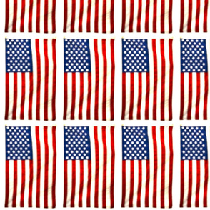 US Flag Postcards with White Borders