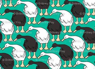 Diagonal Duckies Two