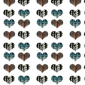 I Heart Birds (white background)