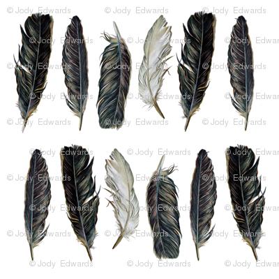 Spirit Feathers