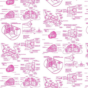 space shuttle pink