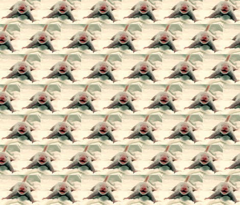 In the beginning - Baby Panda fabric by winterblossom on Spoonflower - custom fabric