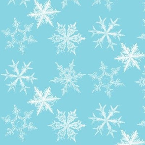 Snowflakes - ice blue
