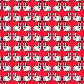 Red Bunnies