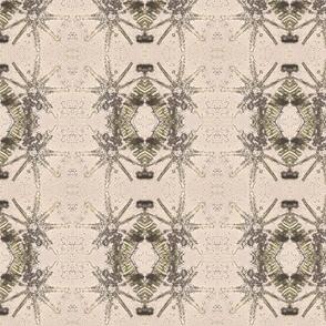 diatom_6