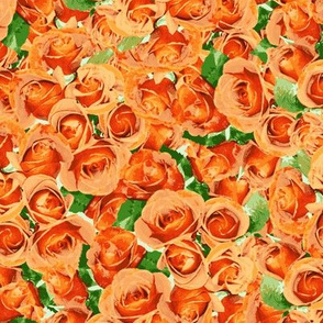 Abundant Roses - Dark Apricot