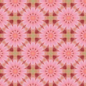 Floral Pink and Coral