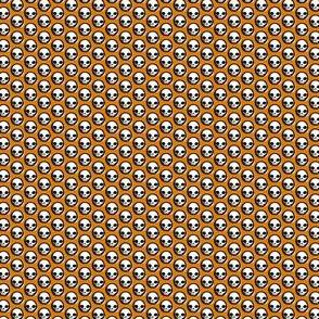 Skull Berries - pumpkin guts