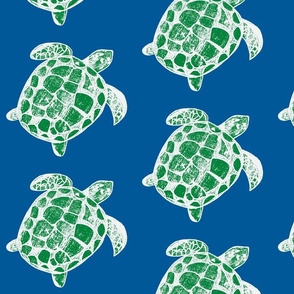 Loggerhead sea turtles Blue and Green