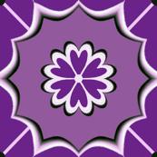 Dutch Purples