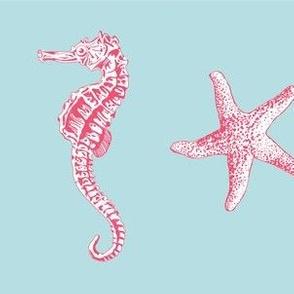 Ocean Life Coral