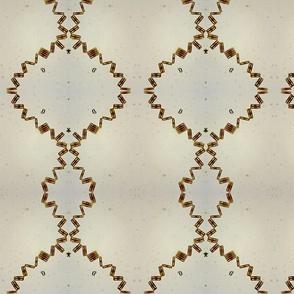 diatom36