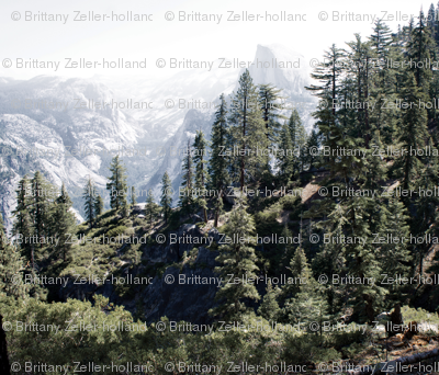Yosemite Trees and Mountains Photo Pillow