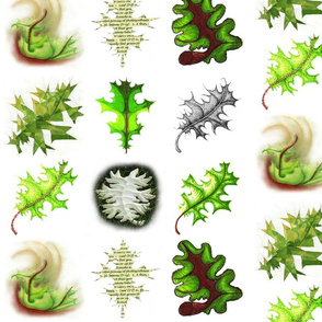 Study of a Cottonwood Leaf in Nine Variations