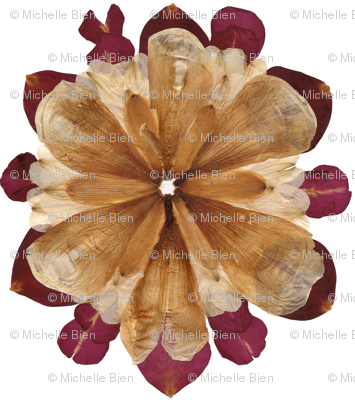 Flower Petal Mandala Composition: Lilies and Roses