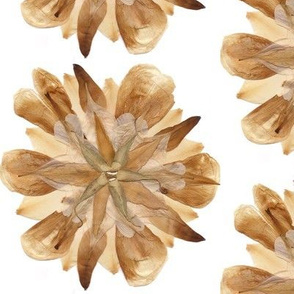 Lily Pressed Flower Petals Mandala