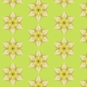 Rrspring_daffodil_01_shop_thumb
