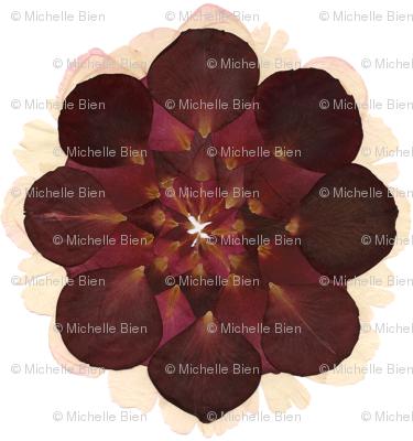 Red Rose Petal Flower Mandala