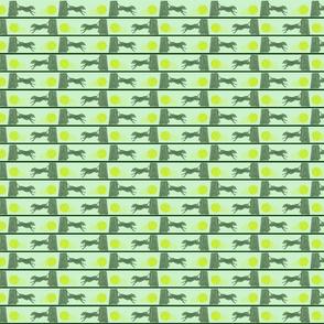 Mini Zooming Flyball dog border - green
