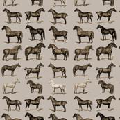 sepiahorses