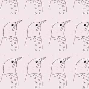 bird_study_23