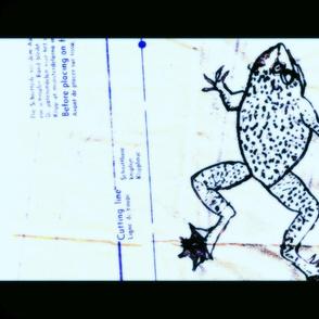 pattern_frog2