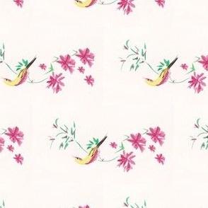 Bird's of Paradise
