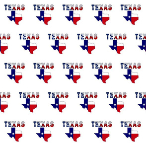 Texas Text Flag Map