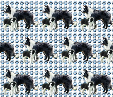 border_collie_mother_and_pup_fabric fabric by dogdaze_ on Spoonflower - custom fabric