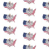 Rrrus-map-flag-eagle_shop_thumb