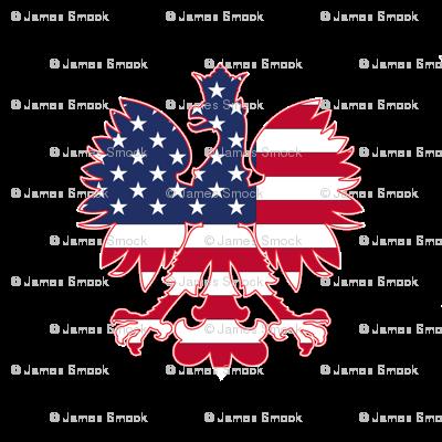 Polish American Eagle