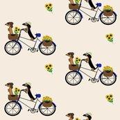 Rfrodosam_bicycle_shop_thumb