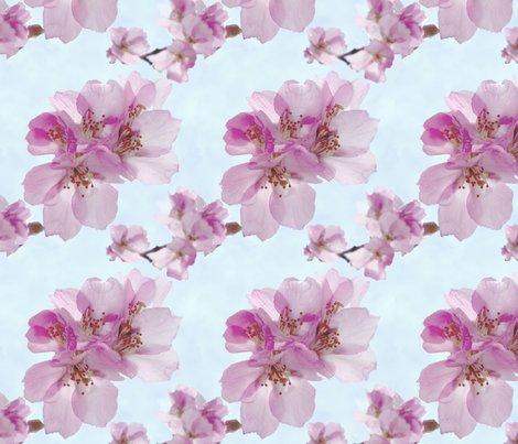 Blossom1__shop_preview