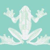 Rrrresized_frog_in_calming_green_shop_thumb